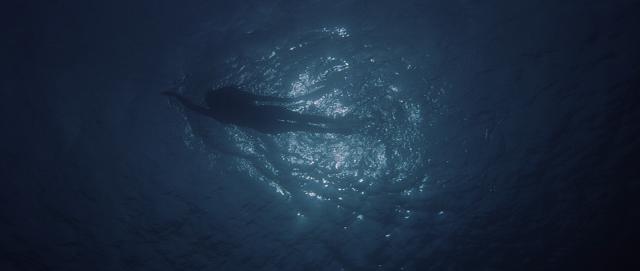 underwater15