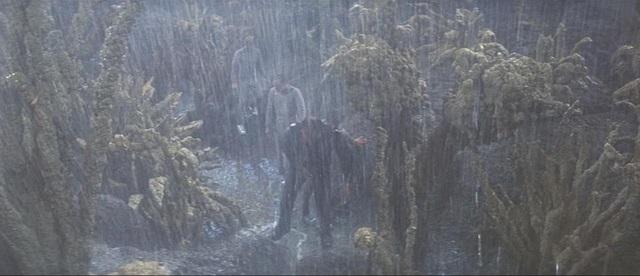 rain29